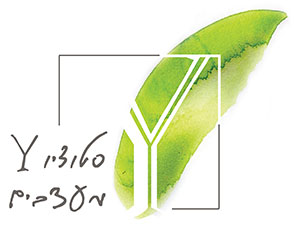 סטודיו Y | גרפיקה סביבתית | עיצוב סביבה